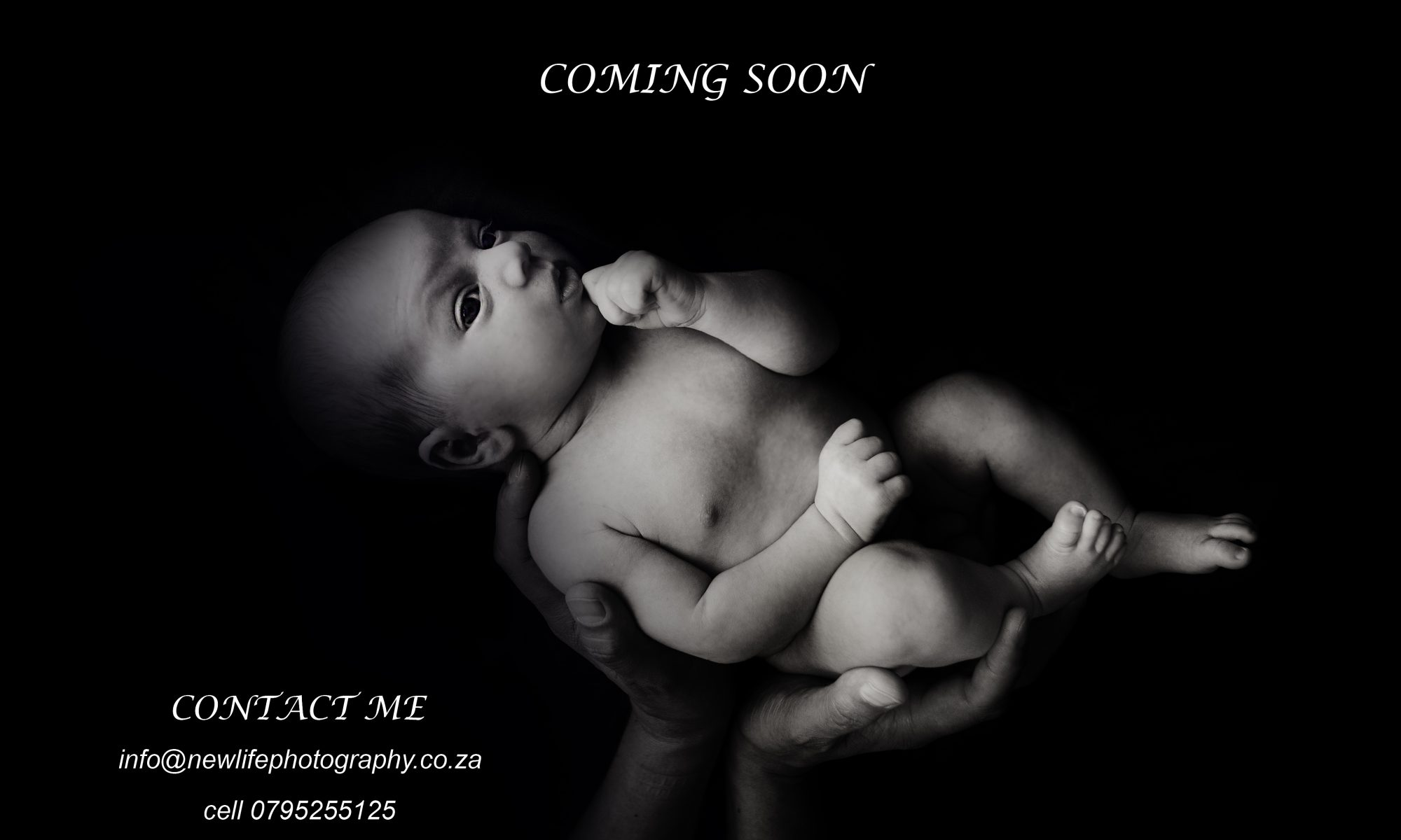 New Life Photography